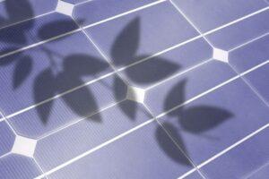 zonnepanelen schaduw (1)