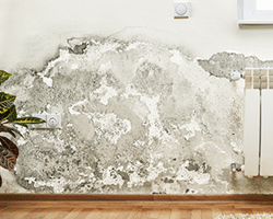 vocht in huis tast de woningstructuur aan