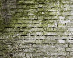 muren impregneren: gevel reinigen