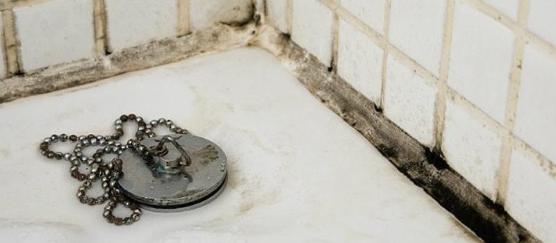 Schimmel in je badkamer? Neem onmiddellijk actie!