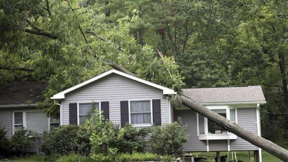 6 tips om je woning te beschermen tegen stormschade en hittegolven.