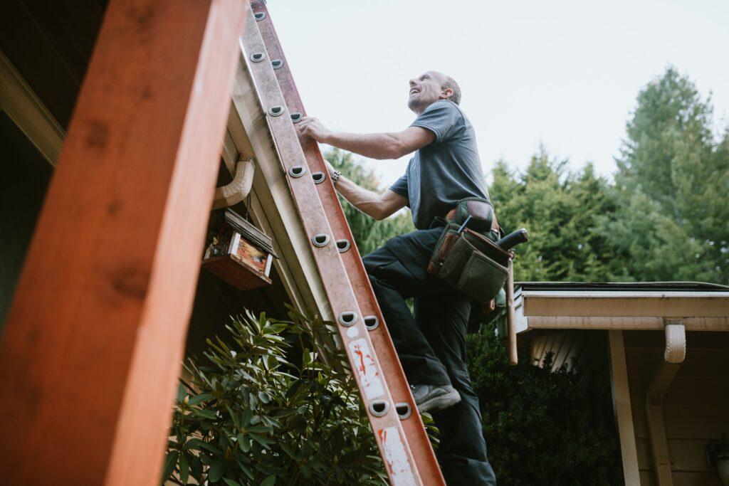 Groendak dakwerker